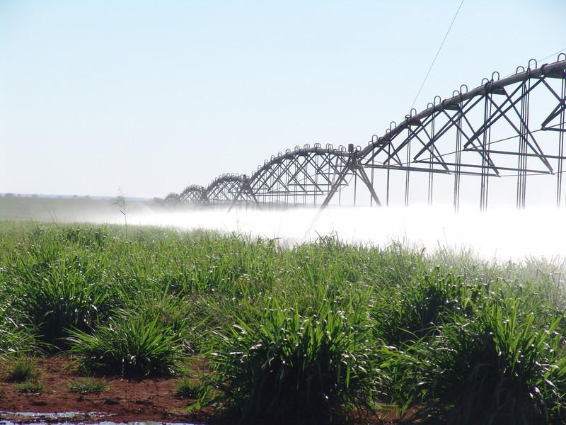 [evento: workshop-manejo-dos-sistemas-agricolas-irrigados-2] - 01.jpg