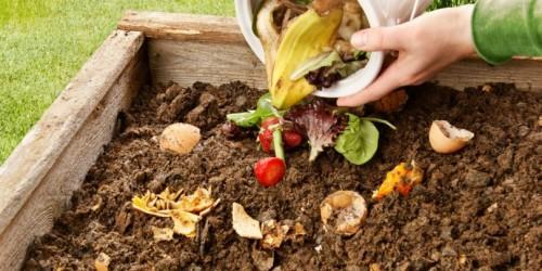 [noticia: sancionada-lei-que-institui-politica-estadual-de-incentivo-a-pratica-de-compostagem] Objetivo: promover o desenvolvimento de práticas de compostagem por meio de programas governamentais (Foto: Reprodução) - Compostagem.jpg