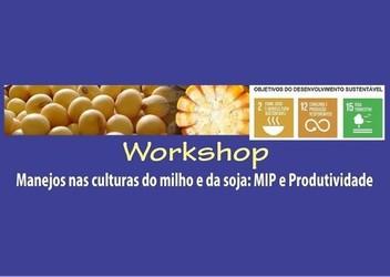[noticia: uruacu-e-mineiros-recebem-workshop-sobre-manejos-nas-culturas-do-milho-e-da-soja-na-proxima-semana] - 01.jpg