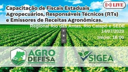 [noticia: agrodefesa-promove-live-sobre-gestao-de-agrotoxicos-com-rts-e-emissores-de-receitas-agronomicas] - LIVE AGRODEFESA.jpeg