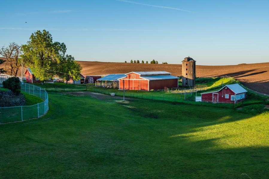 [noticia: cenario-positivo-do-agronegocio-impulsiona-curso-de-avaliacao-de-propriedades-rurais]  - propriedades-rurais.jpg